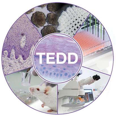 TEDD Zürich