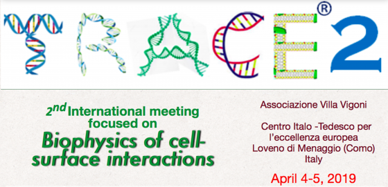 TRACE 2nd International meeting on Biophysics of cell surface interactions