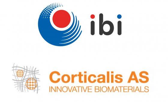 corticalis ibi